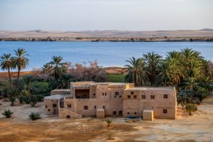 Siwa Oasis is one of the place to visit in egypt