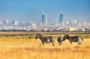 the best place to visit in kenya