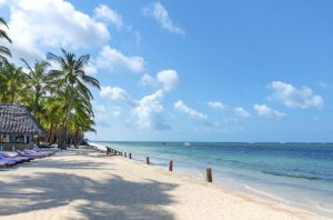 malindi is one of the best places to visit in kenya