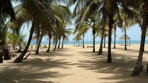 coconut beach in nigeria